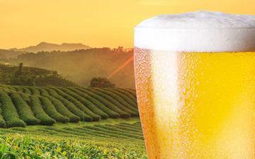 Cold Beer For Spring Fever