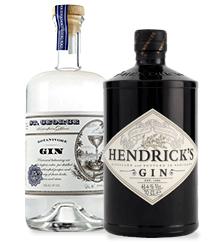 BevMo! Spirits 101 Gin